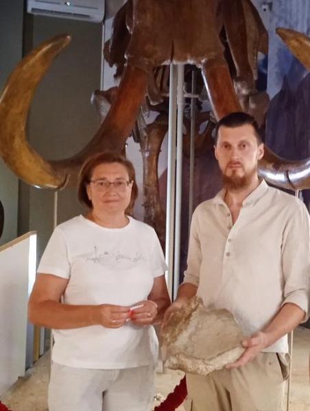 Останки мамонта нашел житель Азова в куче песка из Кагальницкого карьера