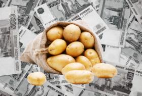 Доходы россиян уменьшились на полтонны картофеля: «если бы зарплату платили картошкой»
