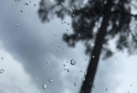 Придут прохладные и дождливые выходные в Красноярск