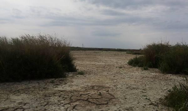Ростовская область попала в «оранжевую зону» - Изменения климата