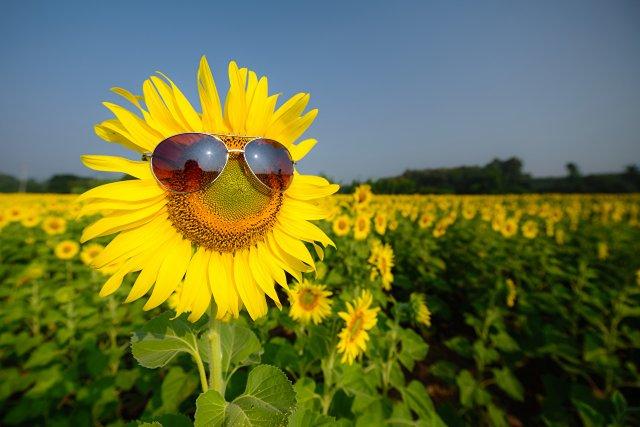 Лето в Азове продолжится: о погоде на следующую неделю