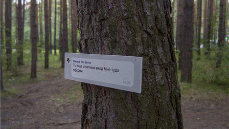 Жительница Академгородка обратилась полицию из-за выставки «Все еще лес»