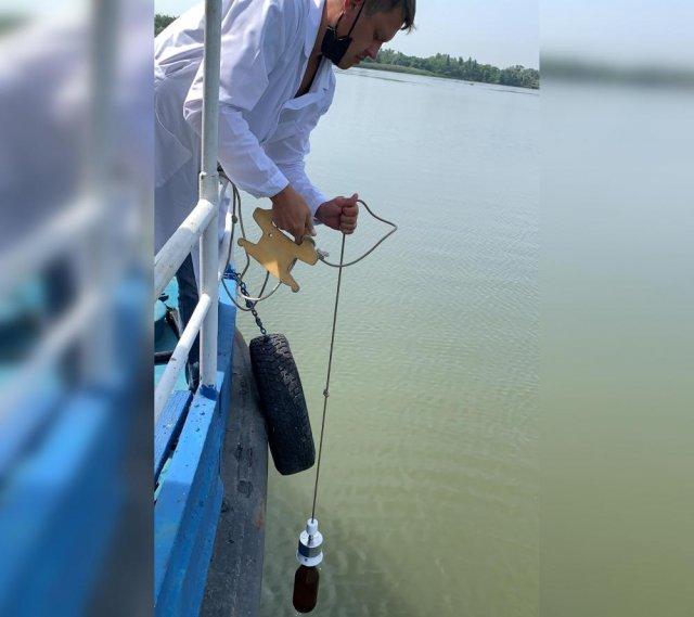 В реке Дон  проводят экологическую проверку