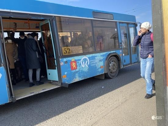 Водителя-скандалиста с маршрута №52 в Красноярске накажет начальство