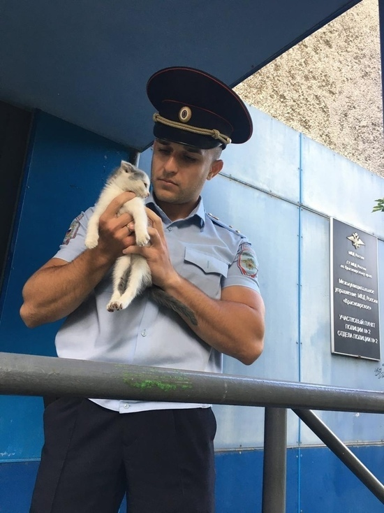 В Красноярске мемный полицейский нашел себе пушистого друга