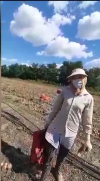 На овощных плантациях Азовского района полицейские выявили нелегальных гастарбайтеров