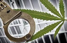 🤦♂️Парень из Азова предложил покурить коноплю начальнику отдела по борьбе с незаконным оборотом наркотиков.