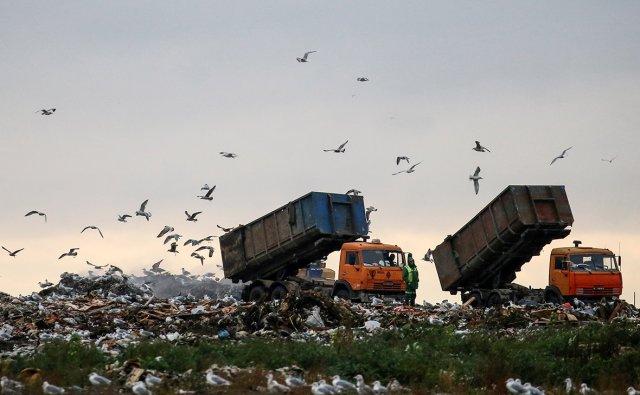 С 1 января 2022 года в Азове хотят расконсервировать старый полигон твёрдых бытовых отходов.
