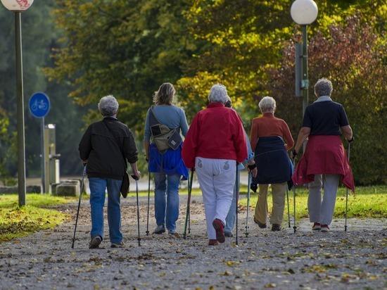 900 человек отметили в Всемирном дне ходьбы в Красноярске