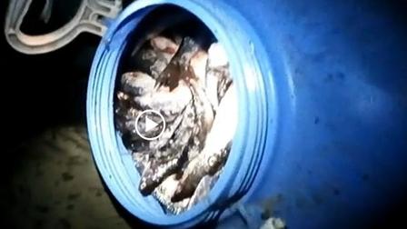 В Богучанах мужчина незаконно выловил рыбу на 90 тысяч рублей